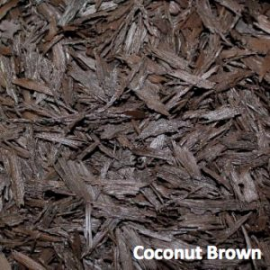 coconut brown
